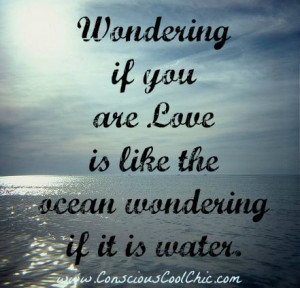 Wondering If You Are Love Is Like The Ocean Wondering If It Is Water