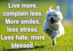 Live more, Complain less, More smiles, Less stress, Less hate, more ...