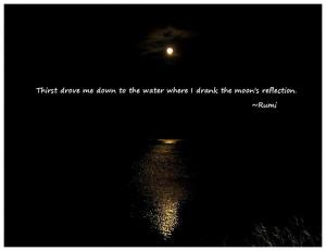 Wisdom of Rumi