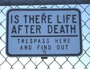 Is there life after death