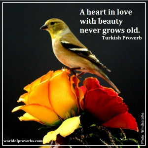 Proverbs - Famous Quotes: A heart in love with beauty never grows old ...