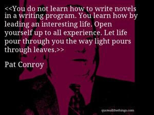 Pat Conroy - quote-You do not learn how to write novels in a writing ...