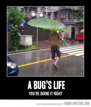 funny big leaf rain umbrella
