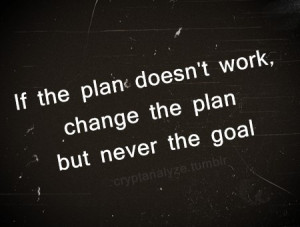 change the plan not the goal by molly