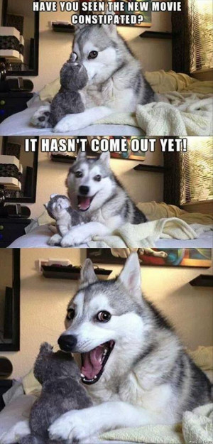 the one liner dog joke meme