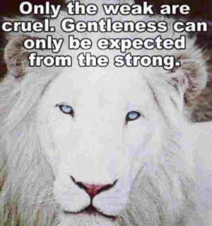 Beautiful lion and great quote
