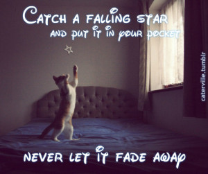 Catch-a-Falling-Star-quote