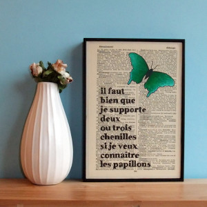 French Butterfly On Vintage Book Page The Little Prince Quote