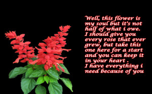 quotes flower love wallpaper Wallpaper with 1920x1200 Resolution