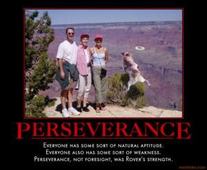Perseverance Funny Motivational Poster