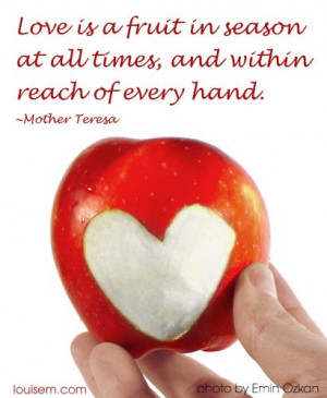 """Love Picture Quote: Mother Teresa """"Love is a Fruit"""""""