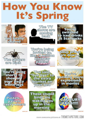 funny spring summer allergies