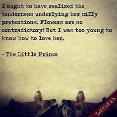 My favorite parts of The Little Prince were the rose and the fox ...