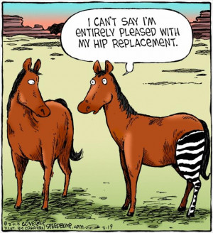 Funny Horse Hip Replacement Cartoon | I can't say I'm entirely pleased ...