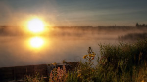 2560 x 1440 keywords morning fog morning fog viewed 623 times tags