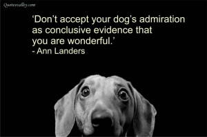 Don't Accept Your Dog's Admiration