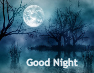 good largest collection of the best rated in hindi good night sms ...