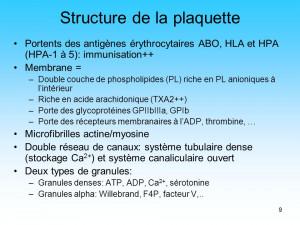 Structure de la plaquette Portents des antigènes érythrocytaires ...