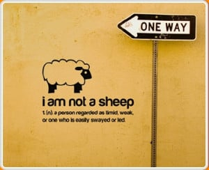 ... sheep'... 'a person regarded as timid, weak, or one who is easy swayed