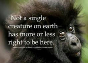 help save endangered species...we all need Help!