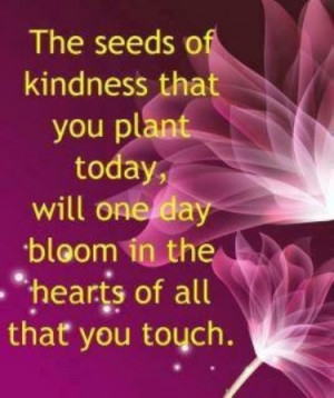 The seeds of kindness that you plant today, will one day bloom in the ...
