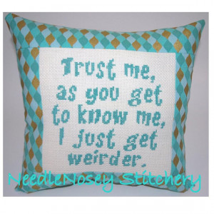 Cross Stitch Pillow Funny Quote, Teal Pillow, Weird Quote