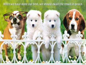 DOG POSTERS WITH QUOTES image galleries - imageKB.com