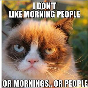 Grumpy Cat Birthday Quotes