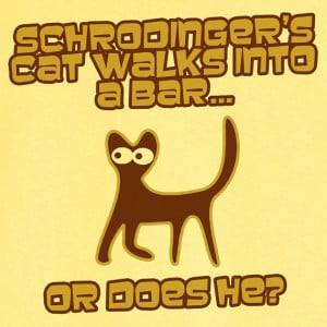 Schrodinger Cat Teach The Controversy Funny Design Printed