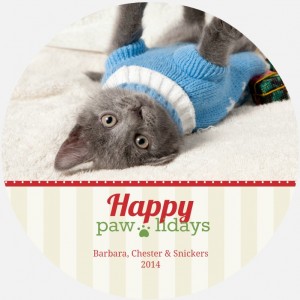 Holiday Card Sayings & Wording: Cat, Dog, Funny, Family, Religious ...