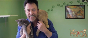 master of illusion recently paid a visit to the cats and dogs at a ...
