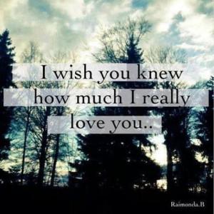 wish u knew how much I love you