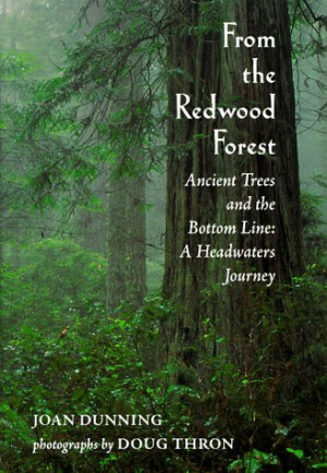 Redwood Tree Images with Quotes