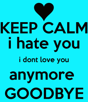 keep-calm-i-hate-you-i-dont-love-you-anymore-goodbye.png