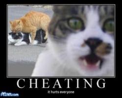 Cheating: It hurts everyone!