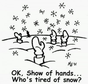 Tired of Snow-too much snow lol