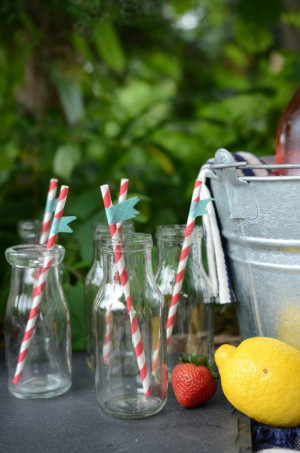 Summer Picnic Party Via...