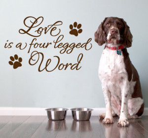 Vinyl Quote Wall Decoration - Love Animals decal Quote