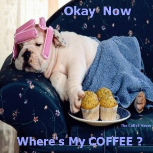 Where's my coffee..... ohGawd, this pinner knows ME! down to the ...