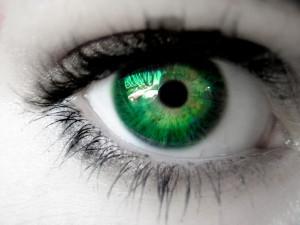 Eyes-PhotoEyes-Photo