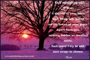 ... old-tree-with-rumi-quote-about-love-rumi-quotes-about-true-love