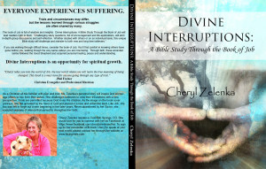 Quote from DIVINE INTERRUPTIONS: A Bible Study Through The Book Of Job