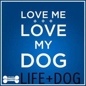 Quotable Quotes From Life Dog