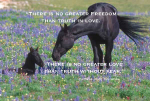 Horse mother and foal pamela quote