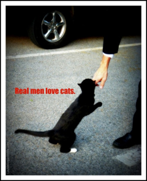 Love My Cat Quotes Cat-man-real men-love cats-