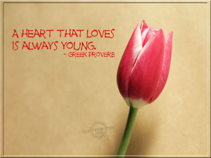 love quotes tulips wallpapers Wallpaper