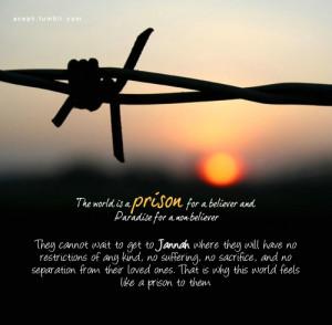 Muslim's Prison