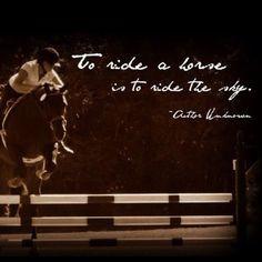 ... quotes sky horses horse jumper hunter jumper quotes english riding