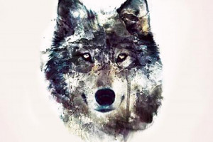 wolf art black wild animal pack the wolves white quotes timber lone ...
