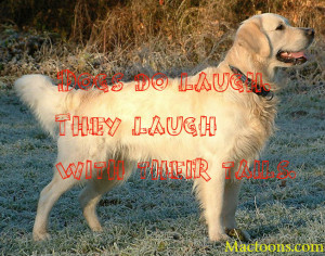 The Love Of A Canine – Inspirational Quotes About Dogs